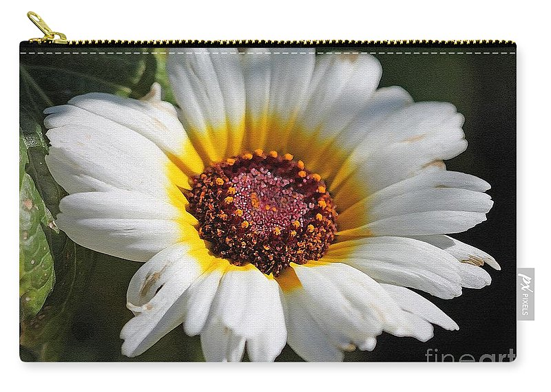 Mccombie Carry-all Pouch featuring the painting Chrysanthemum Named Polar Star by J McCombie