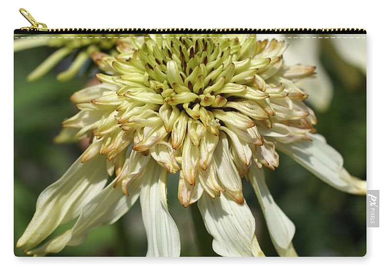 Flower Carry-all Pouch featuring the photograph Coneflower by Heidi Poulin