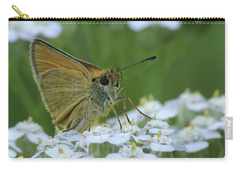 White Flowers Carry-all Pouch featuring the photograph Dion Skipper Yarrow Blossoms by Michael Peychich