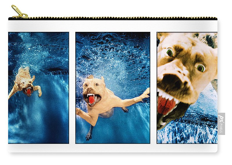 Dog Carry-all Pouch featuring the photograph Dog Underwater Series by Jill Reger