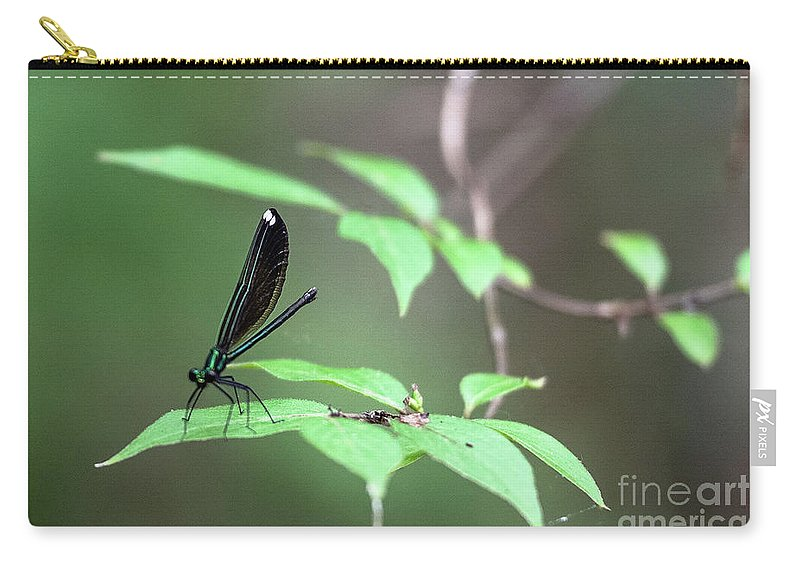 Dragonfly Carry-all Pouch featuring the photograph Dragonfly by Wesley Farnsworth