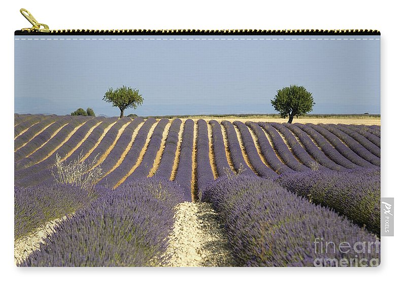 Lavender Carry-all Pouch featuring the photograph Field Of Lavender. Provence by Bernard Jaubert