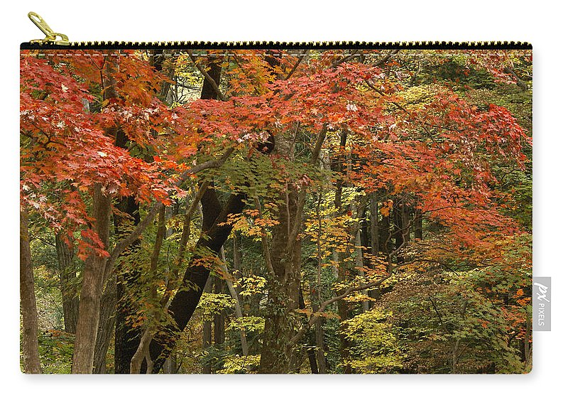 Autumn Carry-all Pouch featuring the photograph Forest In Autumn by Michele Burgess