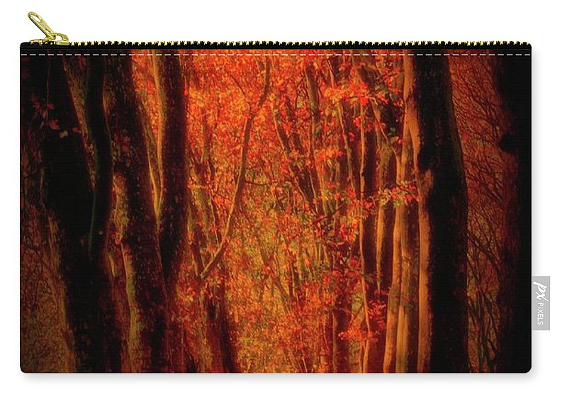Forest Carry-all Pouch featuring the photograph Forest by Soares Paulo