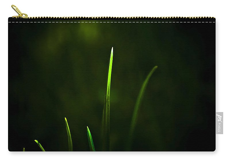 Grass Carry-all Pouch featuring the photograph Grass by Svetlana Sewell