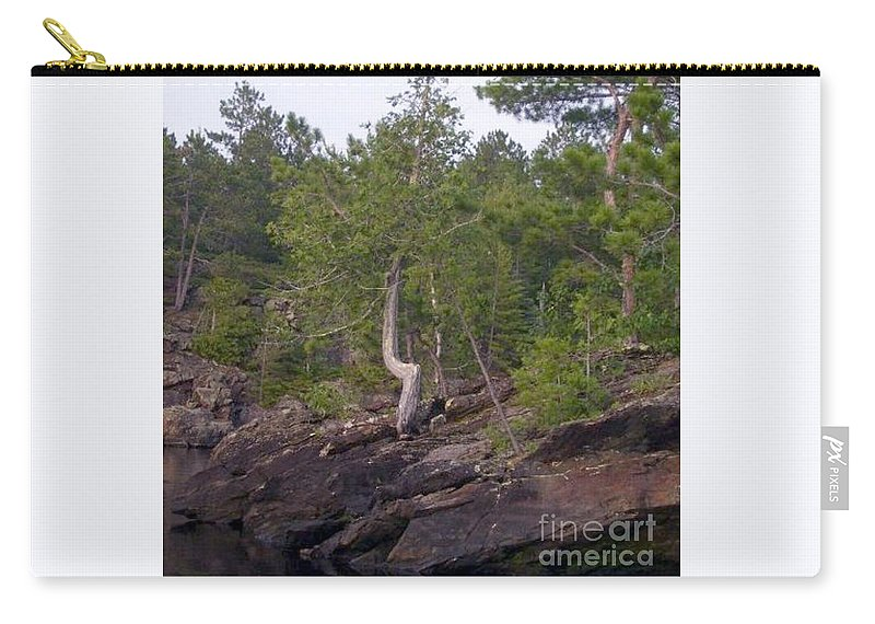 Tree Carry-all Pouch featuring the photograph Growing My Way by Victoria C Clarke