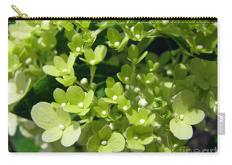 Hydrangea Carry-all Pouch featuring the photograph Hydrangea by Amanda Barcon