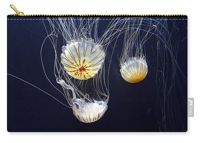 Fish Carry-all Pouch featuring the photograph Jellyfish by FL collection