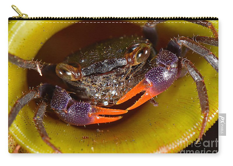 Land Crab Inside Pitcher Plant Carry-all Pouch