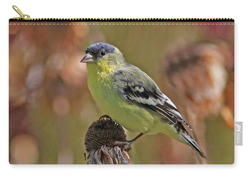 Lesser Goldfinch Carry-all Pouch featuring the photograph Lesser Goldfinch by Gary Wing