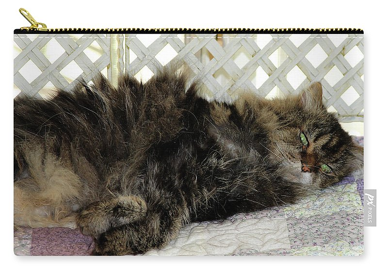 Maine Coon Carry-all Pouch featuring the photograph Maine Coon Cat by Michael Munster