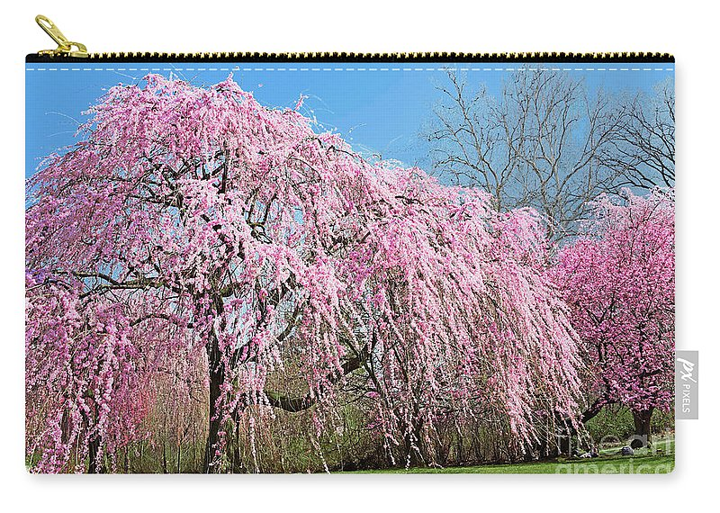 Pink Weeping Cherry Tree In Bloom Carry All Pouch For Sale By