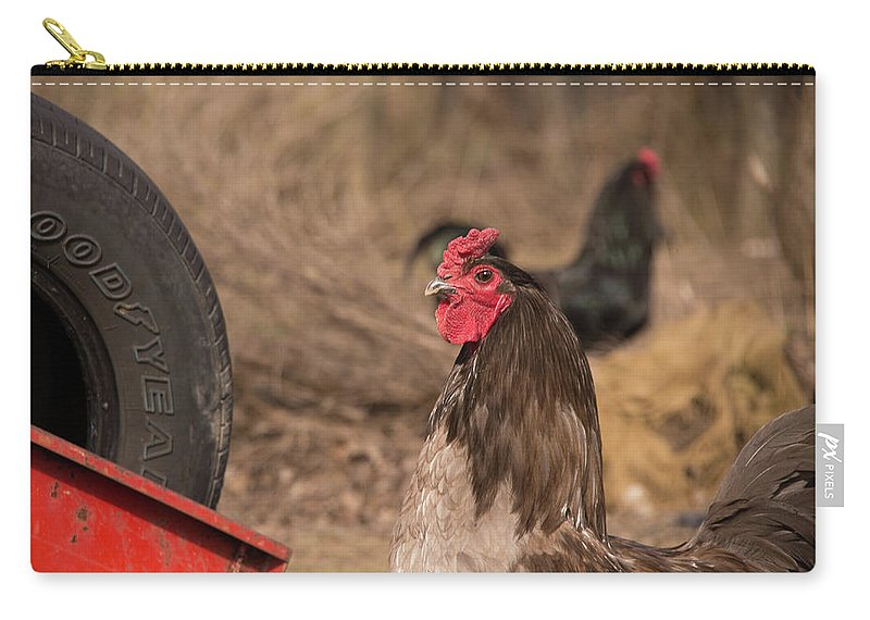 Rooster Carry-all Pouch featuring the photograph Rooster by Diane Schuler