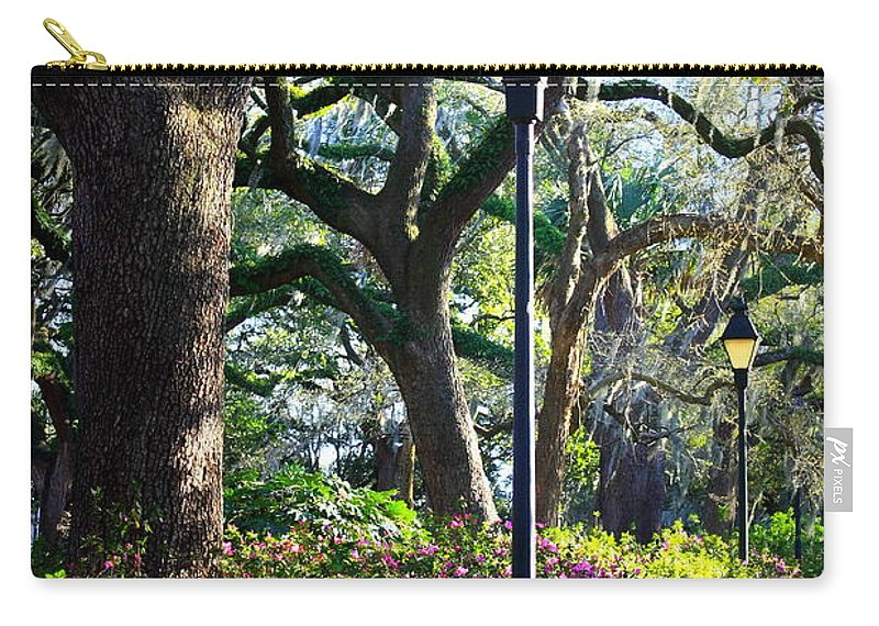 Savannah Carry-all Pouch featuring the photograph Savannah Spring Perspective by Carol Groenen