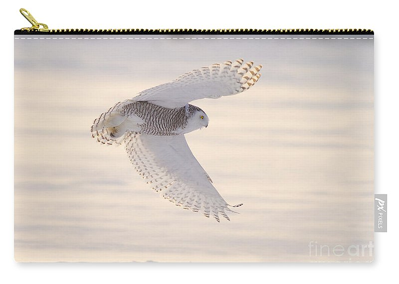 Snowy Owl Carry-all Pouch featuring the photograph Snowy Owl In Flight by Marie Read