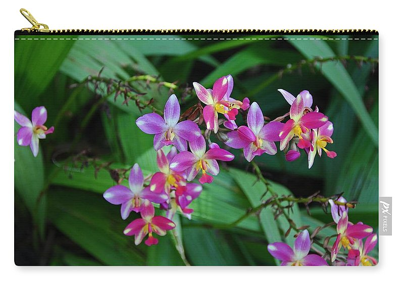 Orchid Carry-all Pouch featuring the photograph The Wild Side Of Wednesday by Michiale Schneider