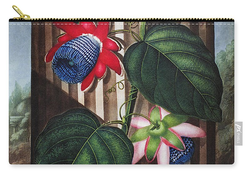 1802 Carry-all Pouch featuring the photograph Thornton: Passion-flower by Granger