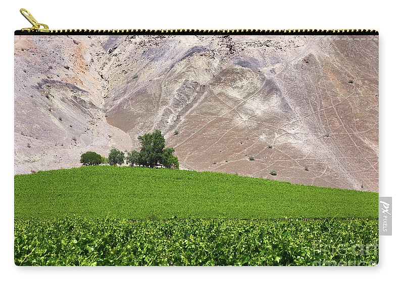Chile Carry-all Pouch featuring the photograph Vines Contrasting With Chiles Atacama Desert by James Brunker