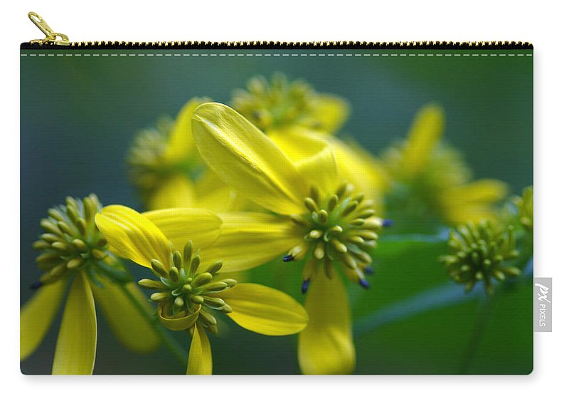 Background Carry-all Pouch featuring the photograph Yellow Wingstem by Jack R Perry