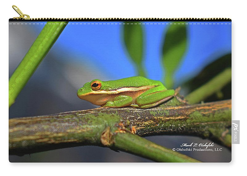 Frog Carry-all Pouch featuring the photograph 2017 11 04 Frog I by Mark Olshefski