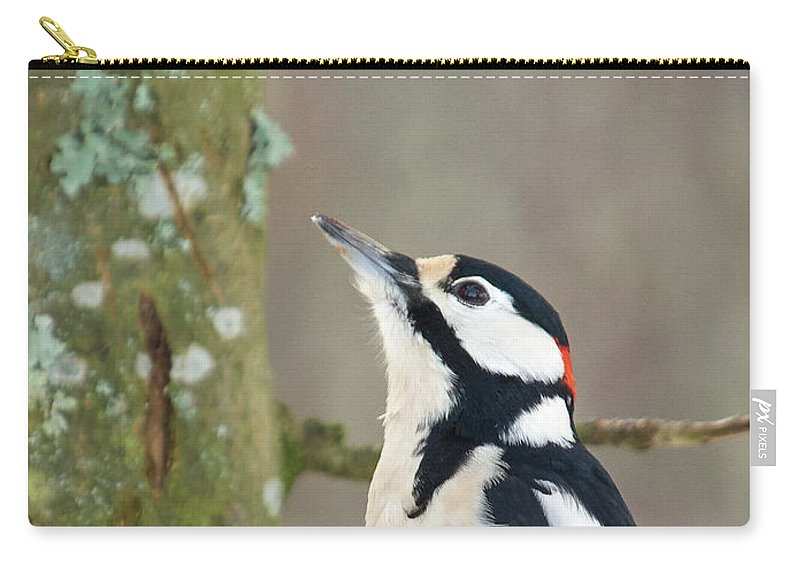 Dendrocopos Major Carry-all Pouch featuring the photograph Great Spotted Woodpecker by Jouko Lehto