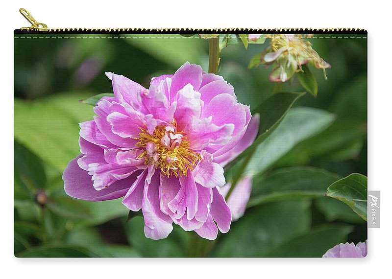 Bellevue Botanical Gardens Carry-all Pouch featuring the photograph Bellevue Botanical Gardens by Michael Bessler