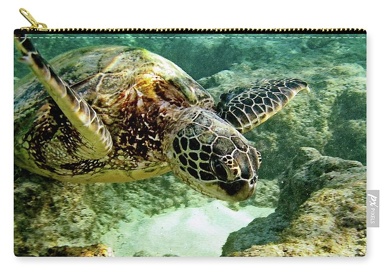 Big Carry-all Pouch featuring the photograph Green Sea Turtle by Michael Peychich