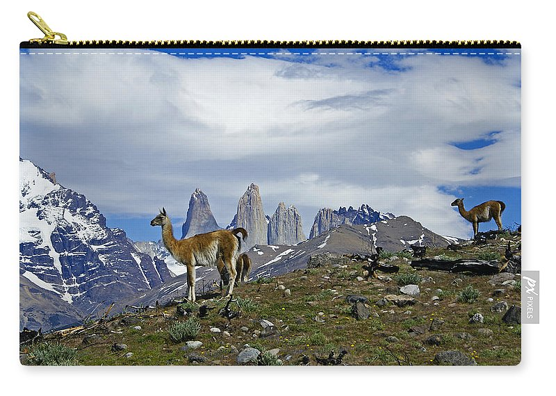 Patagonia Carry-all Pouch featuring the photograph Guanacos In Torres Del Paine by Michele Burgess