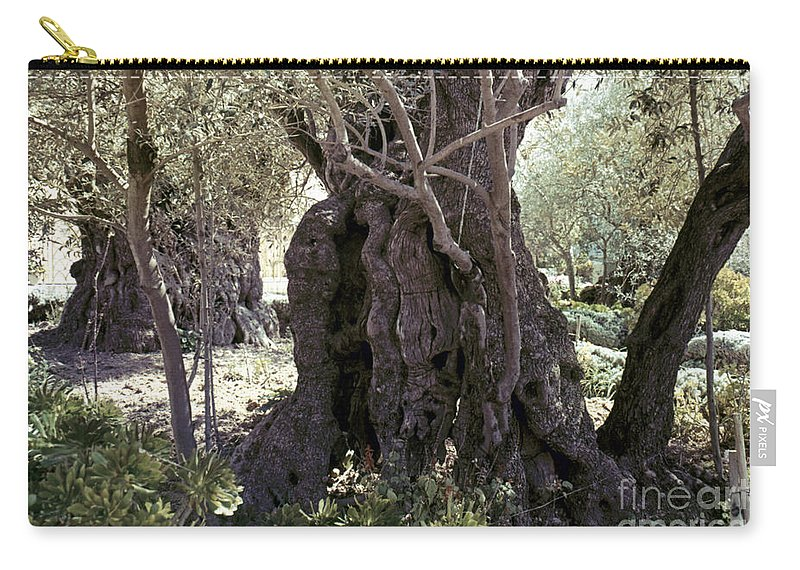 Garden Carry-all Pouch featuring the photograph Holy Land: Jerusalem by Granger