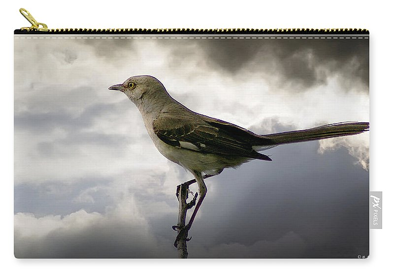 2d Carry-all Pouch featuring the photograph Mockingbird by Brian Wallace