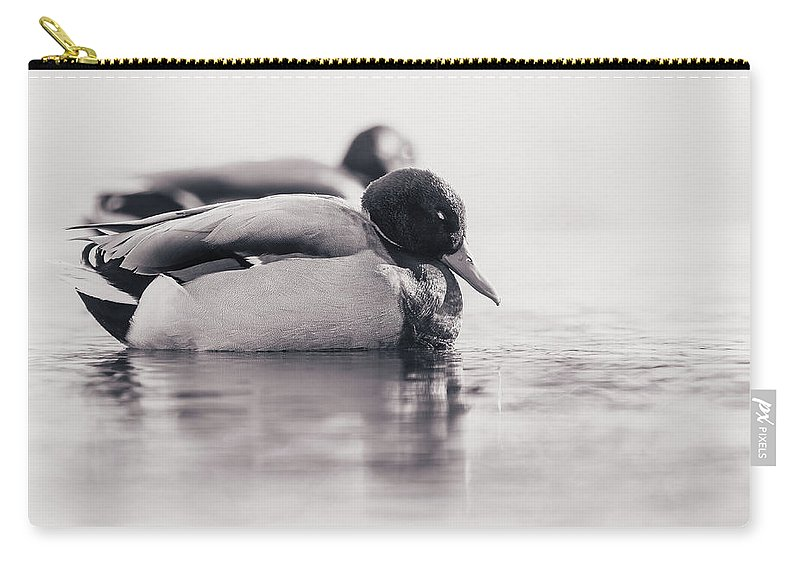 Duck Carry-all Pouch featuring the photograph Napping by Annette Bush