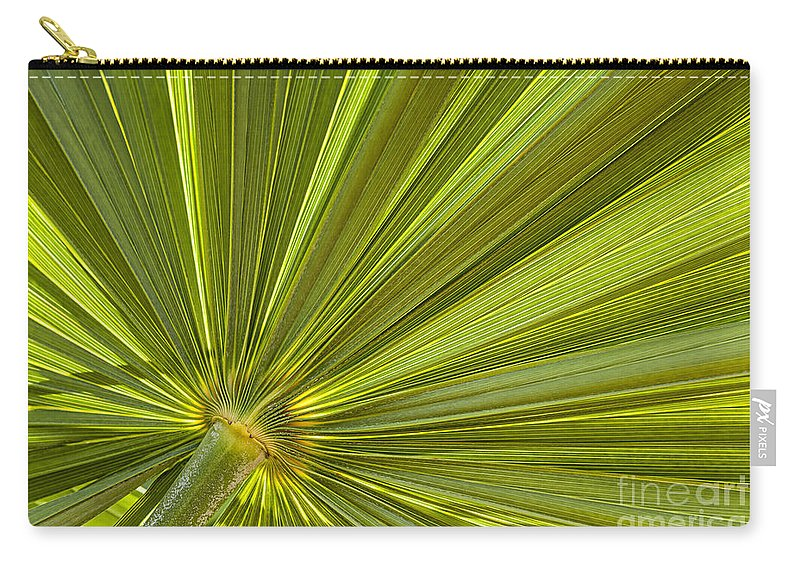 Leaf Carry-all Pouch featuring the photograph Palm Leaf by Elena Elisseeva