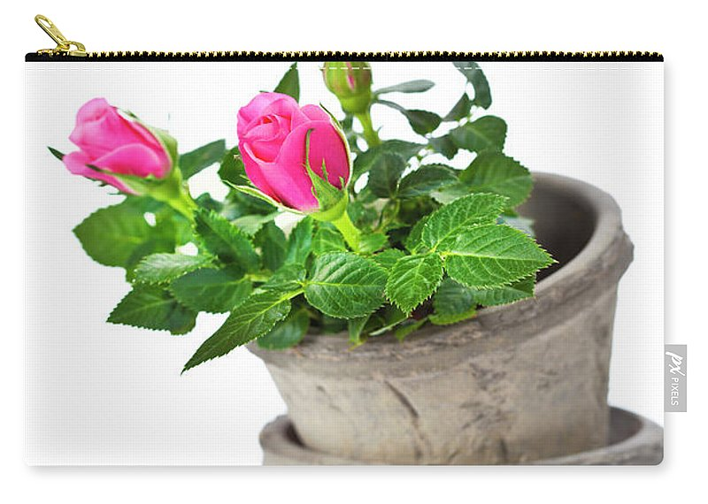 Agriculture Carry-all Pouch featuring the photograph Pink Roses by Natalia Klenova