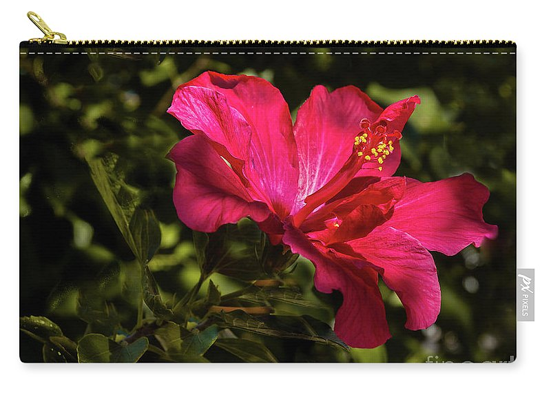 Hibiscus Carry-all Pouch featuring the photograph Red Hibiscus by Robert Bales