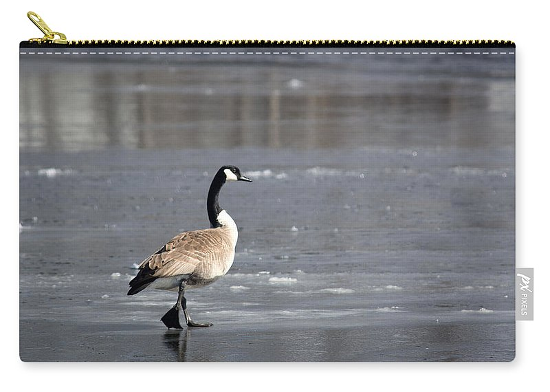 Canadian Goose Carry-all Pouch featuring the photograph Strut by Linda Kerkau