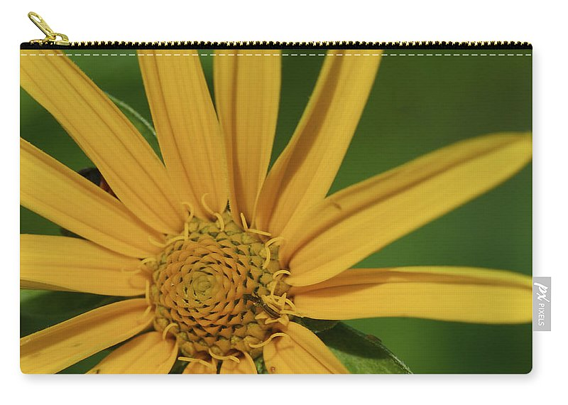 Beautiful Carry-all Pouch featuring the photograph Sunflower by Jack R Perry