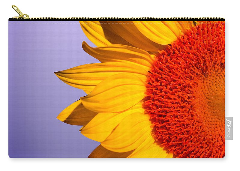 Sunflowers Carry-all Pouch featuring the photograph Sunflowers by Mark Ashkenazi
