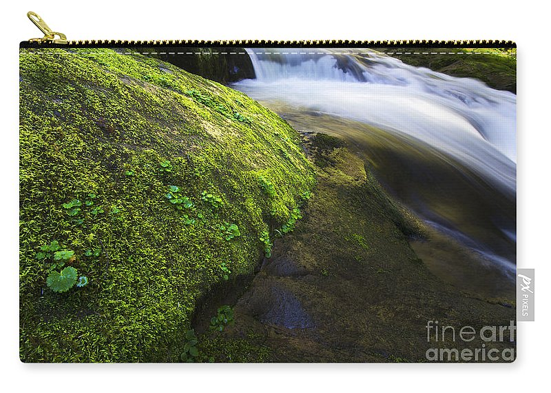 Sweet Creek Carry-all Pouch featuring the photograph Sweet Creek Oregon 12 by Bob Christopher