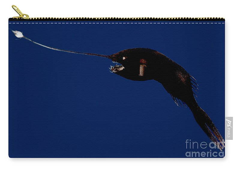 Anglerfish Carry-all Pouch featuring the photograph Whipnose Seadevil by Dant� Fenolio