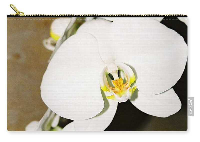 White Orchids Carry-all Pouch featuring the photograph 3 White Orchids by Lauri Novak
