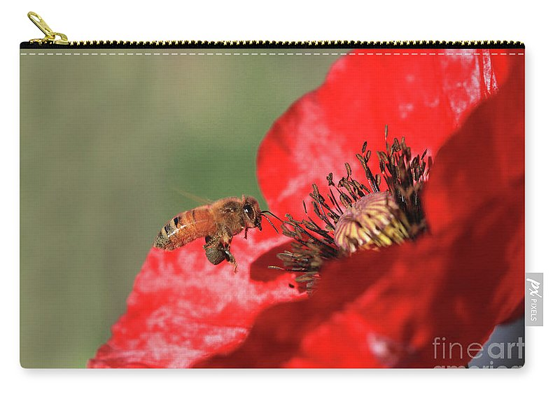 Honeybee Carry-all Pouch featuring the photograph Honeybee by Gary Wing