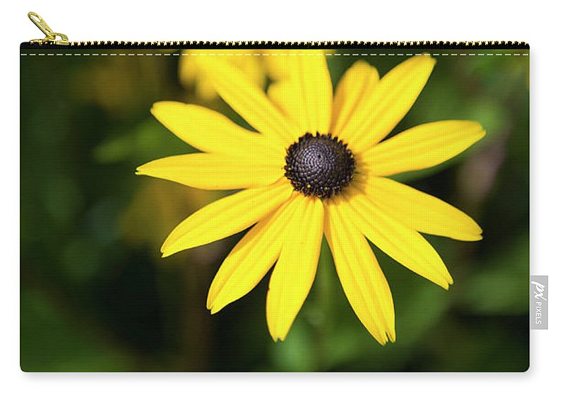 Fine Art Photographed By Jenny Potter Carry-all Pouch featuring the photograph Fine Art by Jenny Potter