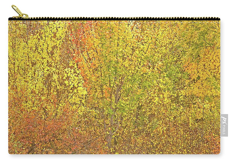 Autumn Colours Carry-all Pouch featuring the photograph 3991 Autumn Profusion by Darrel Giesbrecht