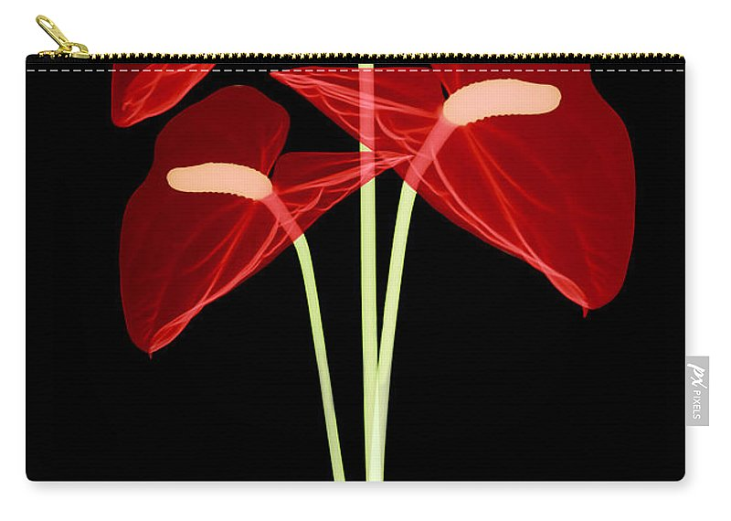 Science Carry-all Pouch featuring the photograph Anthurium Flowers, X-ray by Ted Kinsman