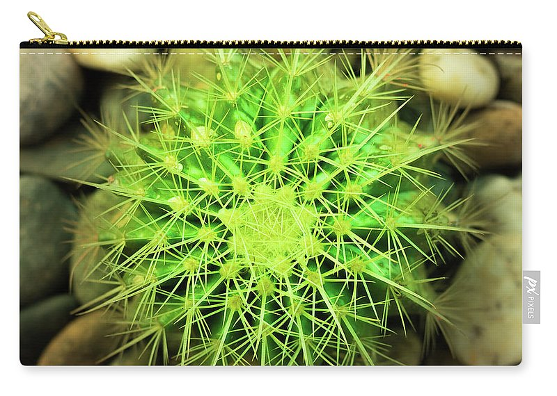 Cactus Carry-all Pouch featuring the photograph Cactus by Sacksith Vorlachith