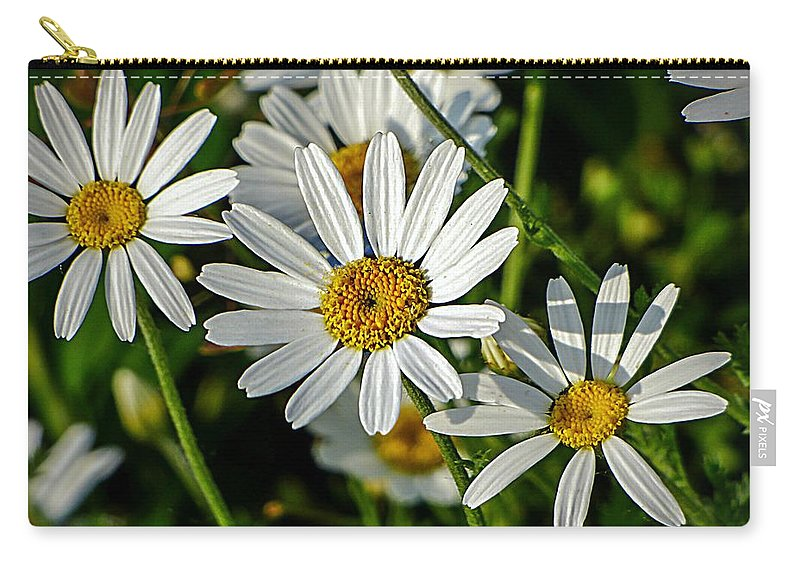 Flowers Carry-all Pouch featuring the photograph Flower Portrait by Dawn Van Doorn