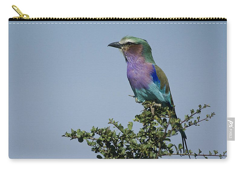 Africa Carry-all Pouch featuring the photograph Lilac-breasted Roller by Michele Burgess