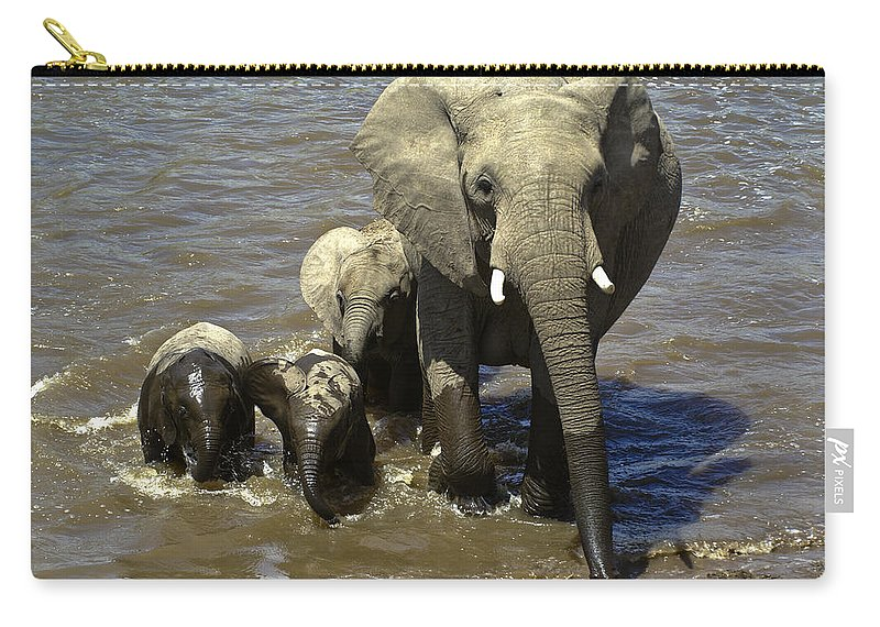 Africa Carry-all Pouch featuring the photograph River Crossing by Michele Burgess