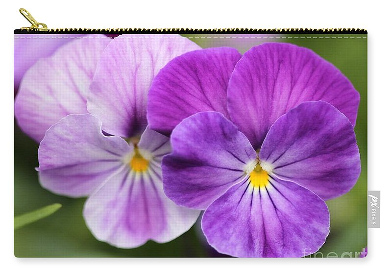 Mccombie Carry-all Pouch featuring the photograph Viola Named Columbine by J McCombie
