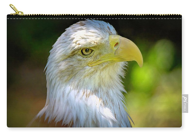 Eagle Carry-all Pouch featuring the photograph American Bald Eagle by LeeAnn McLaneGoetz McLaneGoetzStudioLLCcom